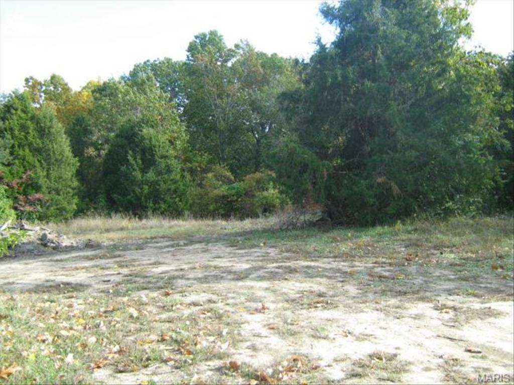 3748 Bouquet Rd, Pacific, MO 63069