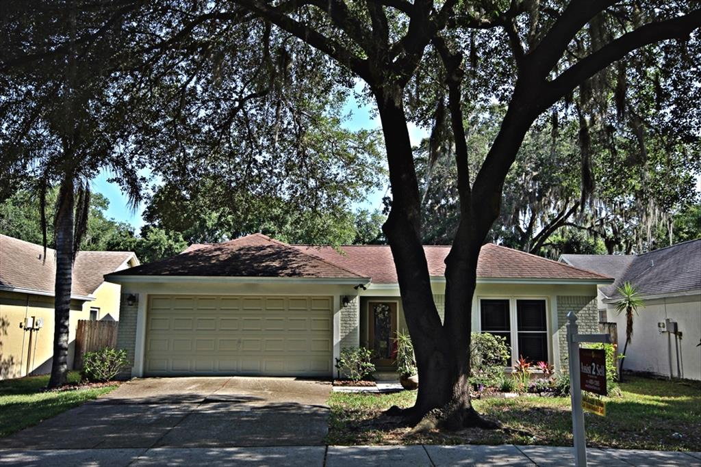 1128 Bloom Hill Ave, Valrico, FL 33596