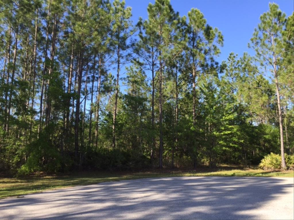 226 Quiet Trail, World Golf Village in  County, FL 32092 Home for Sale