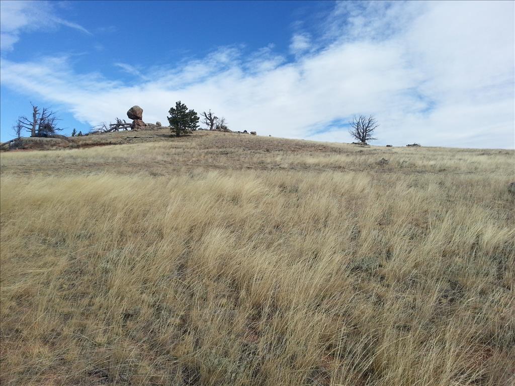 TBD SPRUCE SPRINGS ROAD, Laramie, Wyoming