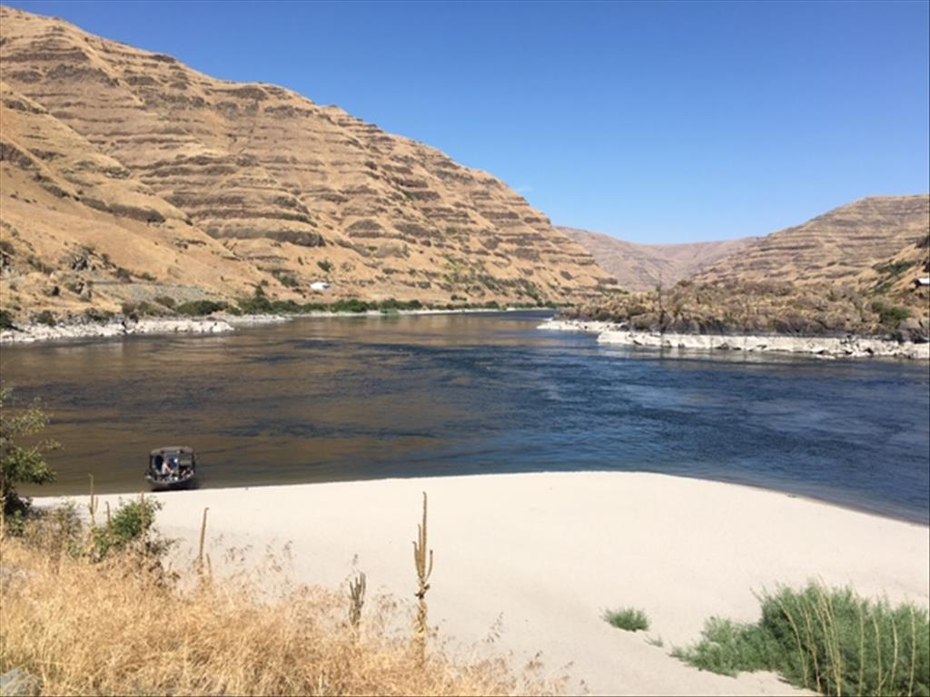 Parcel #1 Snake River Road Asotin, WA 99402