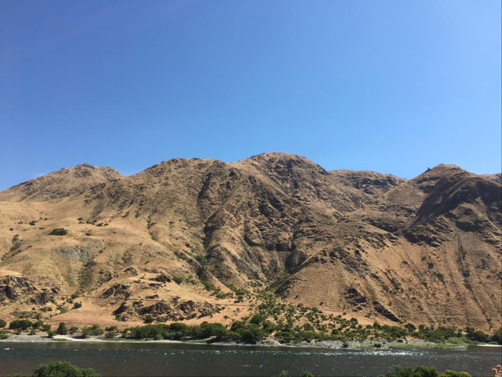 Parcel #13 Snake River Road Asotin, WA 99402