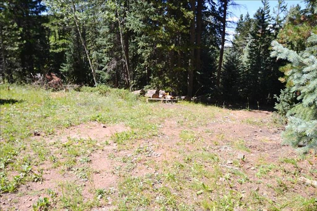 8928 Black Mountain Drive, Conifer, Colorado