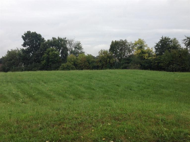 Real Estate for Sale, ListingId: 36256572, Grass Lake,MI49240