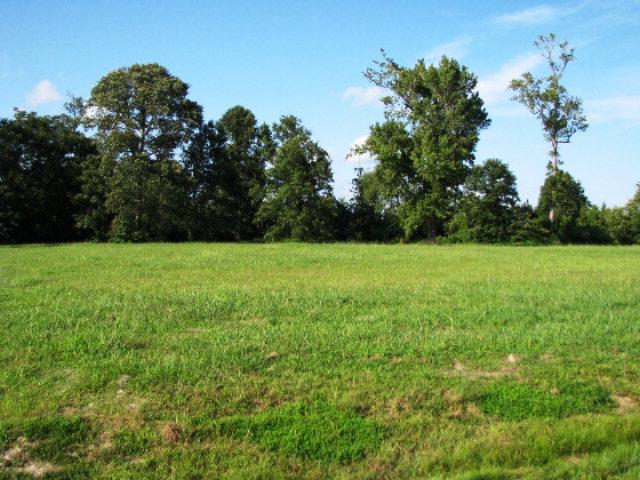 61 Egret Drive Hertford, NC 27944