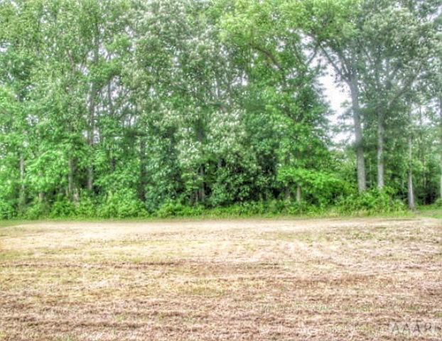 Real Estate for Sale, ListingId: 32297744, Camden,NC27921