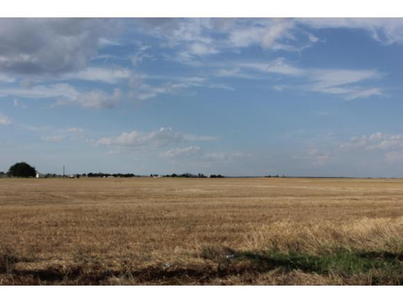 Image of Acreage for Sale near Altus, Oklahoma, in Jackson county: 80.00 acres