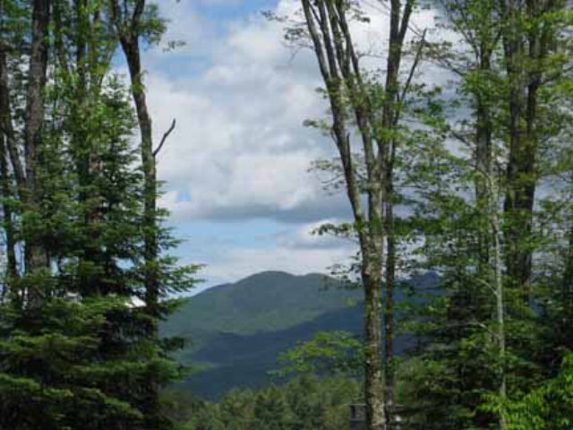 40 Lot # 20  Ledgerock Lane Lake Placid, NY 12946