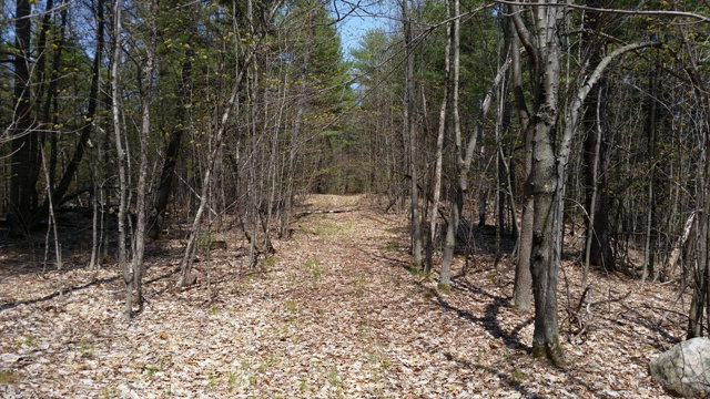 Lot 2 Rolling Mill Hill Ausable Forks, NY 12912