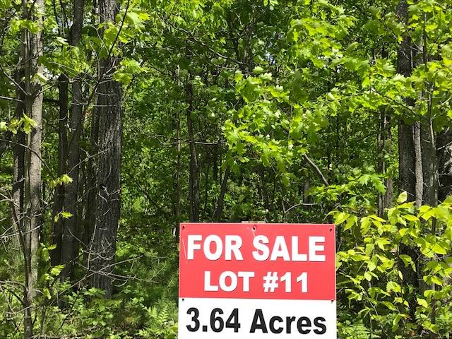 Lot 11 Shirley's Way Ausable Forks, NY 12912