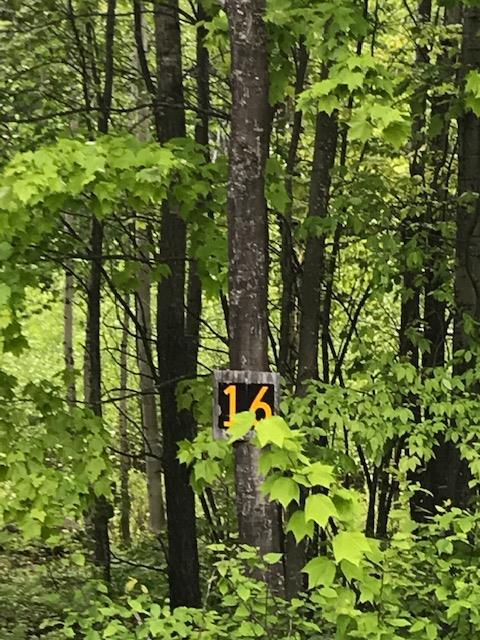Lot 16 Stevens Landing Road Ausable Forks, NY 12912