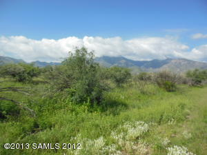 Lot #1 Long Horn, Hereford, AZ 85615