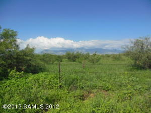 Lot #2b Palominas Road, Hereford, AZ 85615