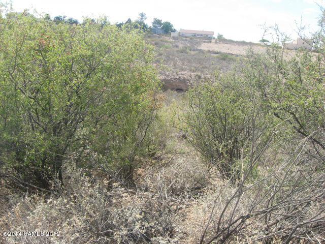 N Apache Dr, Tombstone, AZ 85638
