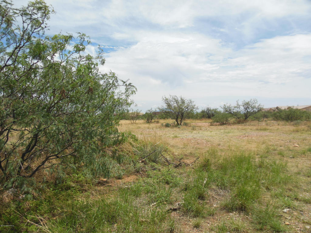 Real Estate for Sale, ListingId: 29277045, Sierra Vista,AZ85650