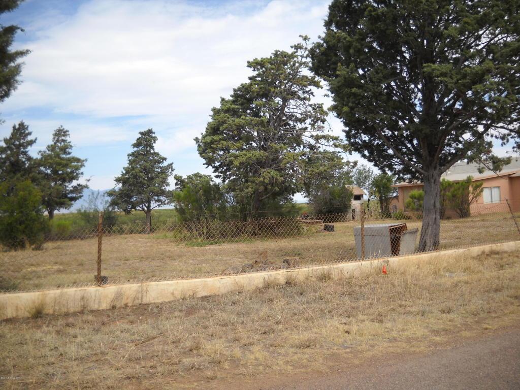 Real Estate for Sale, ListingId: 33791407, Naco,AZ85620