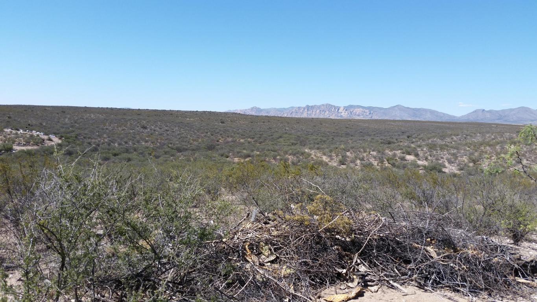 2530 E Colt Rd, Tombstone, AZ 85638