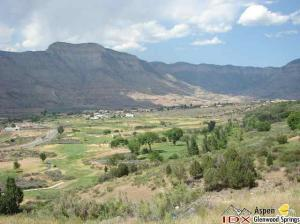 273 Eagle Ridge Dr, Battlement Mesa, CO 81635