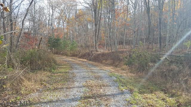 LOT 3 GLADE PIKE ESTATES - photo 1