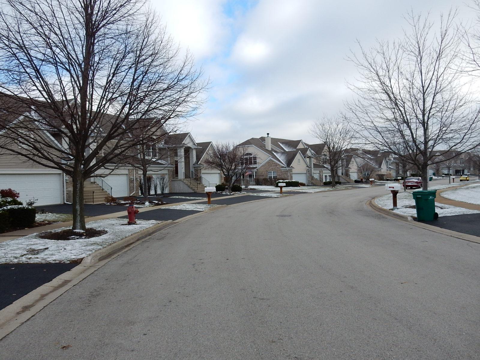 2647 Old Woods Trl, Plainfield, IL 60586