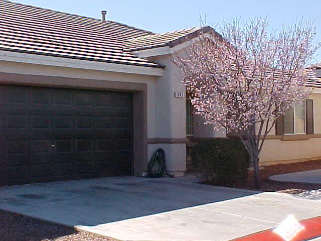 847 Appleblossom Time Ave, North Las Vegas, NV 89031