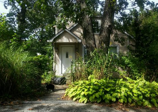 Photo of 16 Overhill Rd  Rocky Point  NY