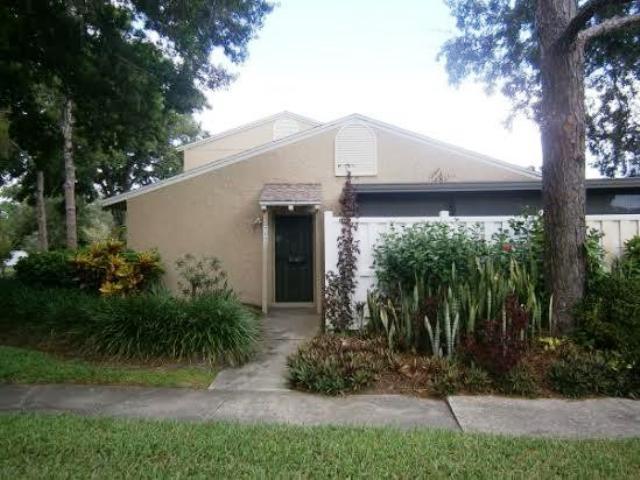 7102 El Dorado Dr,Town and Country  FL