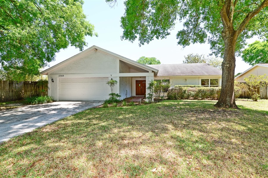 13929 Cherry Dale Ln, Carrollwood, Florida