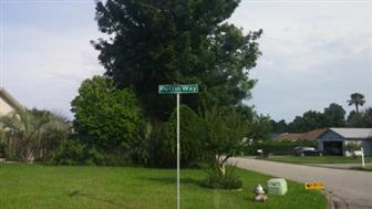 3226 Puffin Way, Orange Park, FL 32065