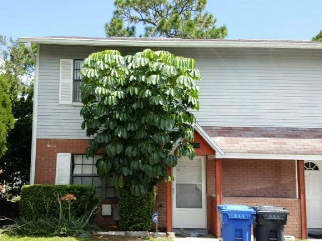 Photo of 12736 N 57th St  Tampa  FL