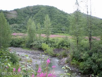 Real Estate for Sale, ListingId: 19109013, Trapper Creek,AK99683
