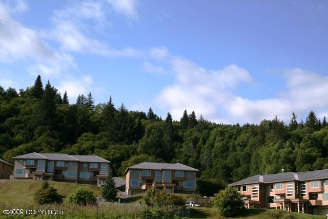Real Estate for Sale, ListingId: 19105365, Homer,AK99603