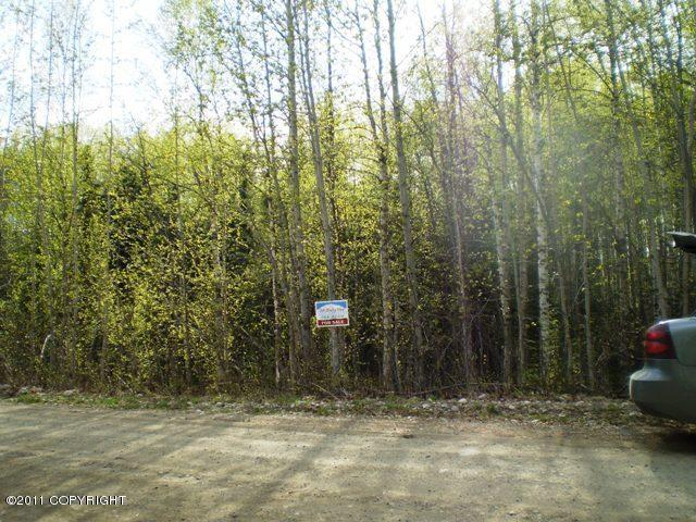 Real Estate for Sale, ListingId: 19109787, Willow,AK99688
