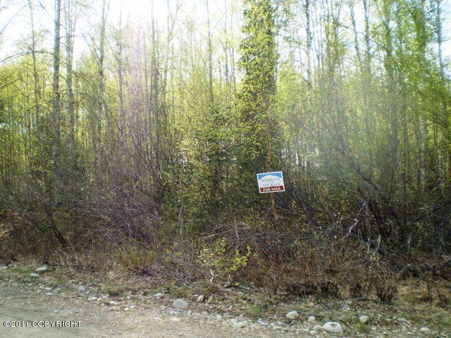 Real Estate for Sale, ListingId: 19109788, Willow,AK99688
