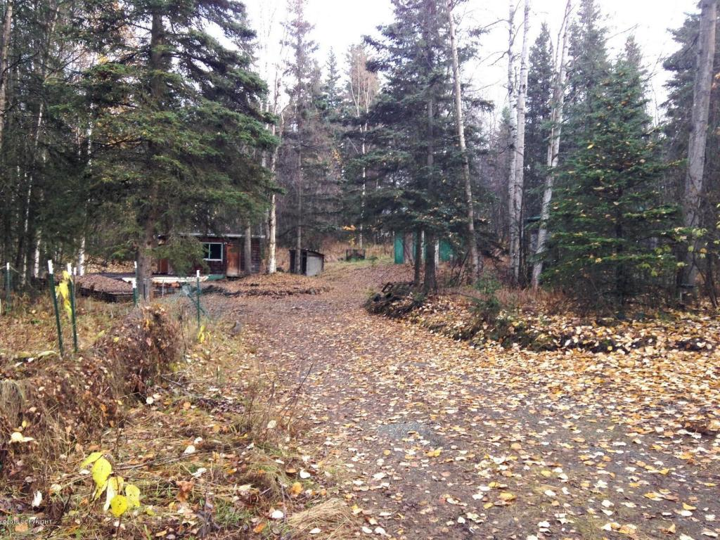 20515 White Birch Rd, Chugiak, AK 99567