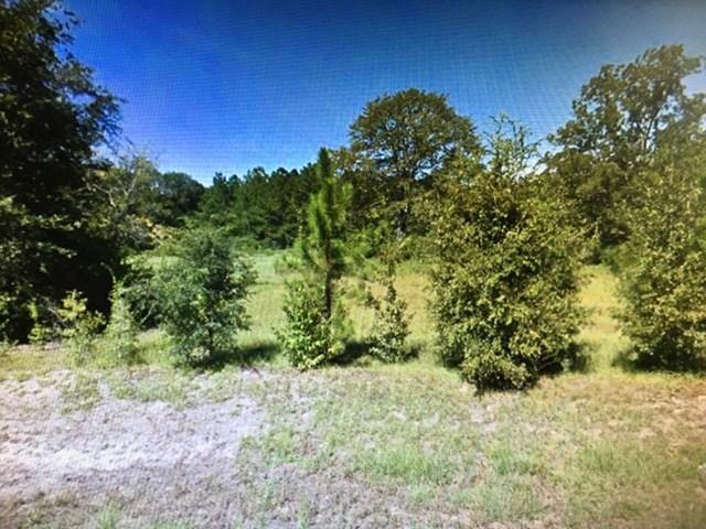 000 White Pond Road Leesburg, GA 31763