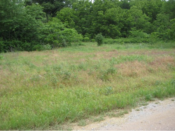 Land for Sale, ListingId:19235450, location: 11 Rolling Hills Dr. Norman 73026