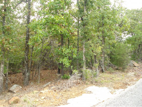 0.34 acres Eufaula, OK