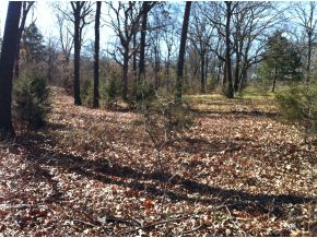 Land for Sale, ListingId:22262417, location: 3030 NE 168th Norman 73026