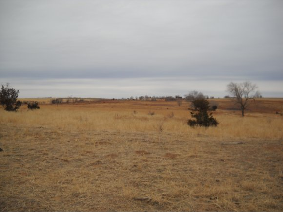 160 acres Cheyenne, OK