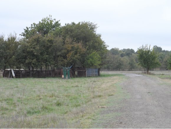 136.58 acres by Mcalester, Oklahoma for sale