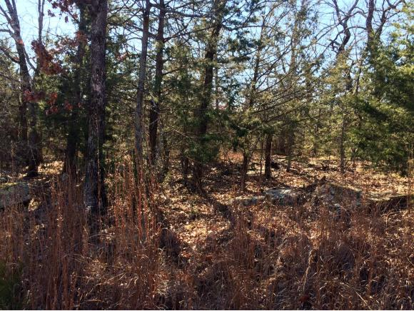 Image of Acreage for Sale near Canadian, Oklahoma, in Pittsburg county: 0.25 acres