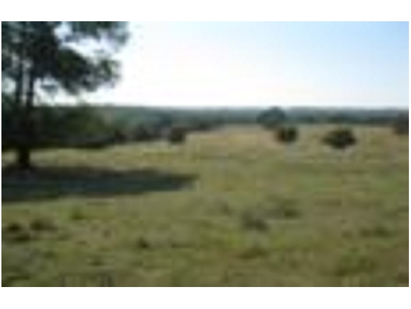 Real Estate for Sale, ListingId: 32029508, Wister,OK74966