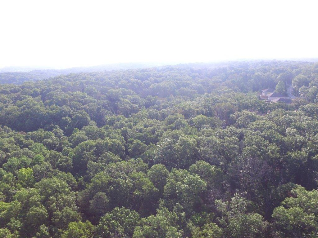 40 Acres+/- sq. W end N Frac half S14/T21N/R31W BC, Bella Vista, Arkansas 0 Bedroom as one of Homes & Land Real Estate