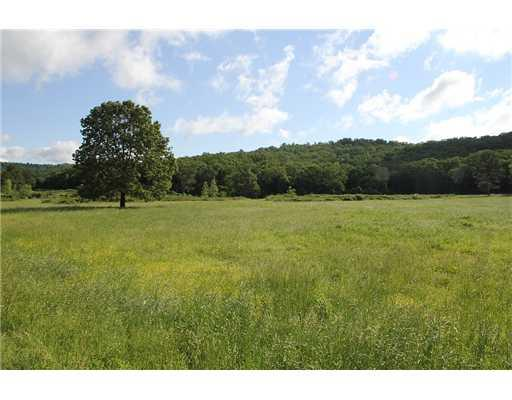 Holt Forge (275 Acres) Road Altus, AR 72821