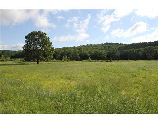 Holt Forge (275 Acres) Rd Altus, AR 72821