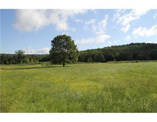 Holt Forge (75 Acres) Road Altus, AR 72821