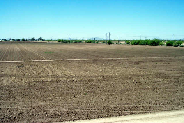 106 acres in Eloy, Arizona