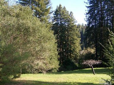 11.96 acres in Guerneville, California