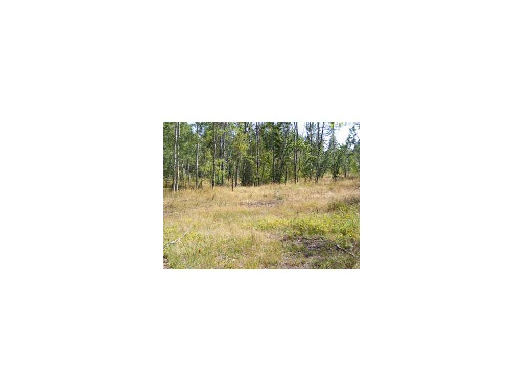 Real Estate for Sale, ListingId: 32565249, Red Lodge,MT59068